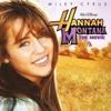 Butterfly Fly Away (Miley Cyrus cover) - Dey Ilagan & Nelynn Vargas