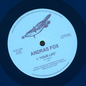 Your Life by Andras Fox