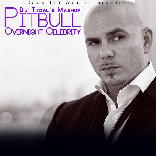 Pitbull - Overnight Celebrity Mashup