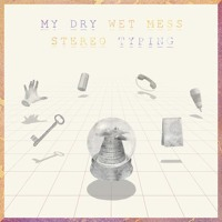 My Dry Wet Mess Austere Coincidences Artwork