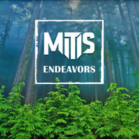Listen to a new electro song Endeavors - MitiS