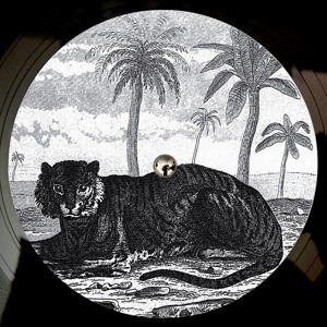 Lied (Out 10 Dec on Vinyl) by Tigerskin