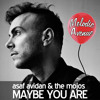 Maybe You Are (Melodic Avenue Remix) by Asaf Avidan & The Mojos
