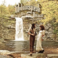 Widowspeak The Dark Age Artwork