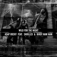A$AP Rocky Wild For The Night Artwork