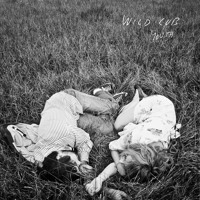 Wild Cub Hidden In The Night Artwork