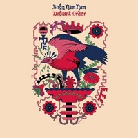 Listen to a new remix song Defiant Order (UZ Remix) - Birdy Nam Nam