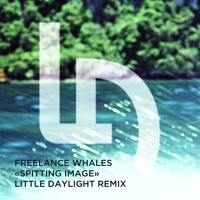 Freelance Whales Spitting Image (Little Daylight Remix) Artwork