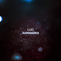 Luo' Aardvarks Artwork
