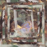 Dutch Uncles Fester (Werkha Remix) Artwork