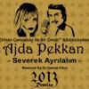 Dj OsMaN eKiCi vs Ajda Pekkan - Severek Ayrilalim (RemiX 2013)