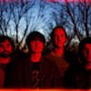 Field Day Radio - Episode 8 with Animal Collective