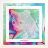 Let Go (A.N.D.Y. Remix) by Voltron