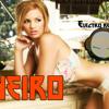 Electro-R MIX - JANUARY 2k13 #vol.1