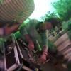 DJ S@SHI - Pranam Poye Badha (BhAnU Mix)