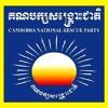 CNRP Policy Press Mar 2013