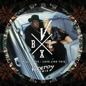 Love Like This (Viceroy Remix) by Bixel Boys
