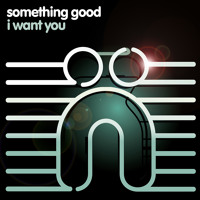 Listen to a new electro song I Want You - Something Good