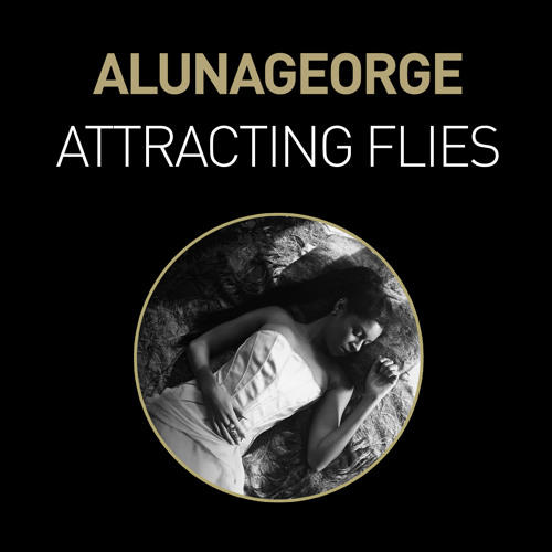 Attracting Flies (Baauer Remix) by AlunaGeorge
