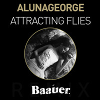 AlunaGeorge Attracting Flies (Baauer Remix) Artwork