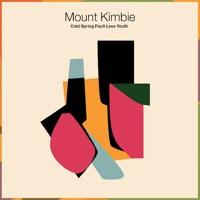 Mount Kimbie Made To Stray Artwork