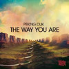 Peking Duk - The Way You Are (Ryan Blyth & Shaun Banger Scott Remix)