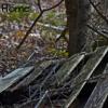 Free Download Wagon Wheel- Darius Rucker Cover Mp3
