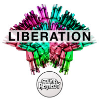 Sound Remedy Liberation Artwork
