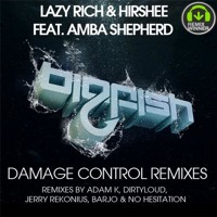Listen to a new electro song Damage Control (Dirtyloud Remix) - Lazy Rich and Hirshee (ft. Amba Shepherd)