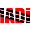 Madix - Drunken Driver II (Raw)