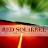 Robert Fertl - Red Squirrel