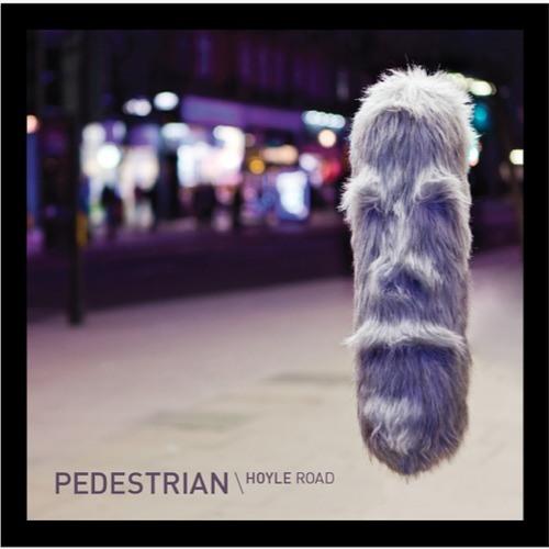 Pedestrian – Hoyle Road