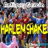 218# Anthony Garcia - Harlem Shake (Original Re-Edit Baauer Dance Dutch House Mix)