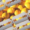 Astronomar - Razor Blade Lemonade [FREE DOWNLOAD]