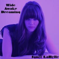 Janet Labelle Wide Awake Dreaming Artwork