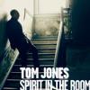 Hit Or Miss   Tom Jones