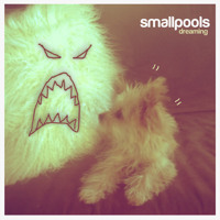 Listen to a new rock song Dreaming - Smallpools