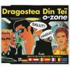O-zone - Dragostea Din Tei 2013 (Summer Remix 2013)