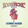 Cosmo Baker's Picnic Mix - Official 2013 Roots Picnic Mixtape