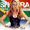 Waka Waka -Shakira (Trip Tronic Rmx) Free Download