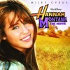 poster of Miley Cyrus Butterfly Fly Away Official Music song