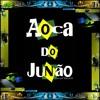 Free Download 009- Monobloco - Taj Mahal, Filho Maravilha, País Tropical - •°• Dj Junão Miranda •°• Mp3