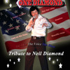 Forever In Blue Jeans.....One Diamond....Neil Diamond Tribute