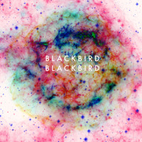Blackbird Blackbird Refresh Artwork