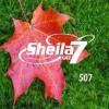 Sheila on7 Dan Acoustic