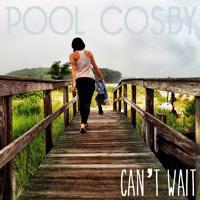 Pool Cosby Next Level Artwork