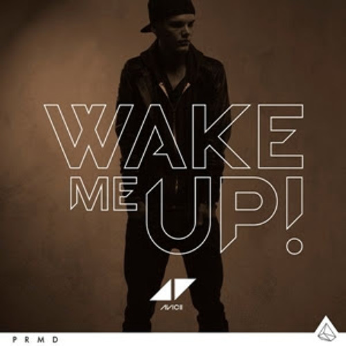 Avicii feat. Aloe Blacc- Wake Me Up (Extended Mix)