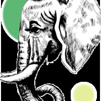 Elephant Eyes India Artwork