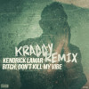 Kendrick Lamar - Bitch Don't Kill My Vibe (KRADDY Remix)