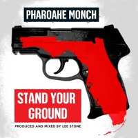 Pharoahe Monch Stand Your Ground (Trayvon Martin Tribute) Artwork